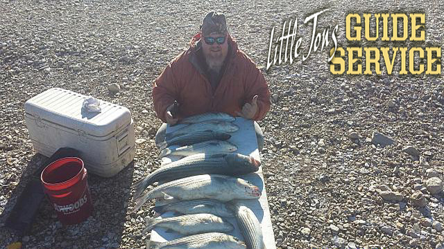 Limit of striper caught fishing.jpg